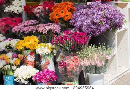 Colorful blooming fresh spring flowers in vase