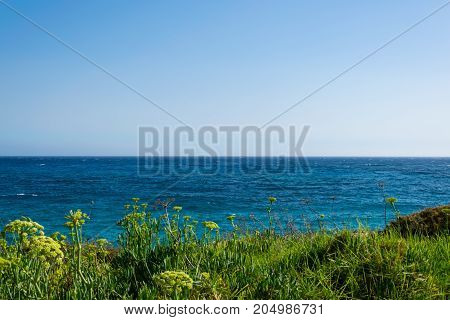 View of beautiful sky with sea skyline and grass on foreground