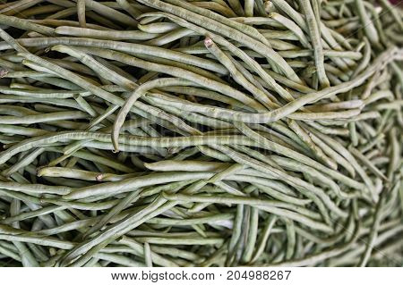 Close up view of pods of green beans