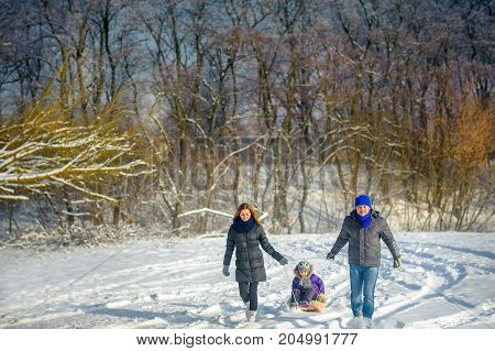 happy family rides the sledge in the wood