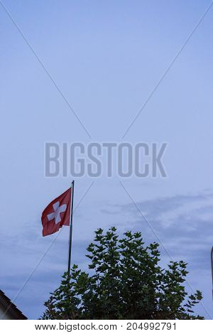 swiss national flag with dark sunset cloudy sky and tree view