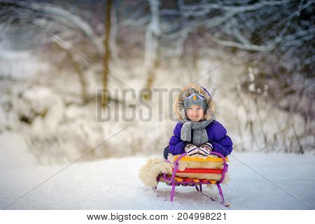 The happy girl smiles sitting on the sledge in the snow wood