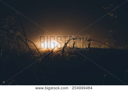 light in the field at night. terrible mysterious atmosphere