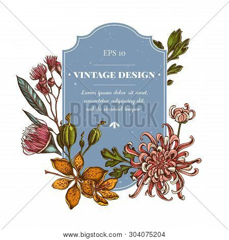 Badge Design With Colored Japanese Chrysanthemum, Blackberry Lily, Eucalyptus Flower