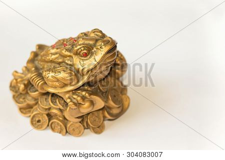 Cash Mascot - Chan Chu - A Gold Frog Figurine Sitting On Coins Isolated On White Background, In Prof