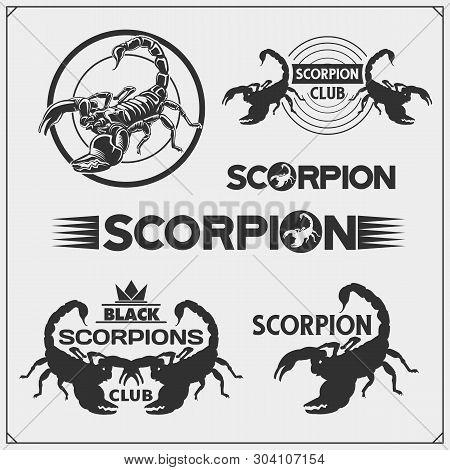 Scorpion2.eps