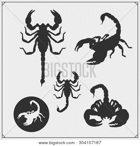Scorpion3.eps
