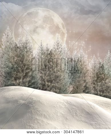 Enchanted Winter Forest In A Full Moon Evening - 3d Illustration