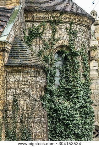 Ancient Hungarian Vajdahunyad Castle With Green Ivy Winds