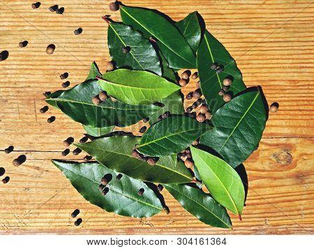 Bay Leaf Or Laurel (laurus Nobilis) & Allspice Pepper On Wooden Background. Organic Fresh Green Bay