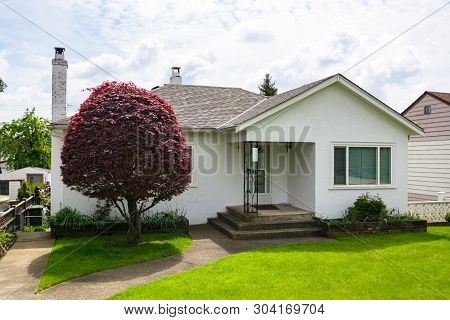 Small Family House With Green Lawn And Decorative Tree In Front.  Average Residential House On Sunny