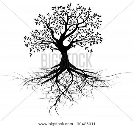 old black vector tree with roots