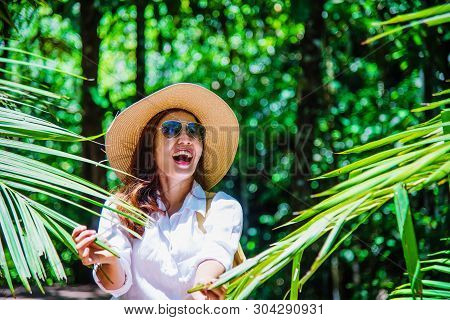 Asian Women Travel Relax Travel Nature In The Holiday. Nature Study In The Forest. Girl Happy Walkin