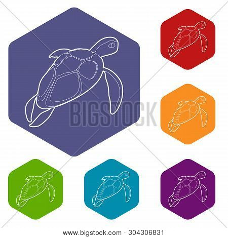 Turtle Icons Vector Colorful Hexahedron Set Collection Isolated On White