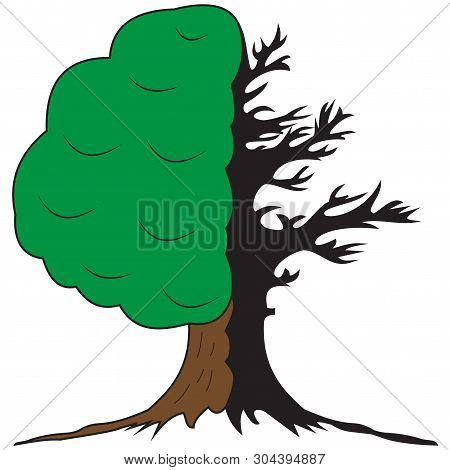 An Illustration Of A Symbolic Tree Of Two Halves Alive And Green And Dried And Dead