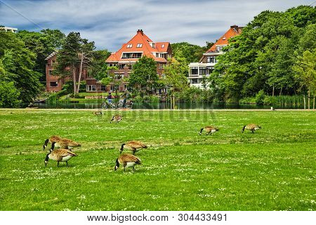 The Hague, The Netherlands - May 25, 2019: The Territory Of Public Park Rosarium Westbroekpark With