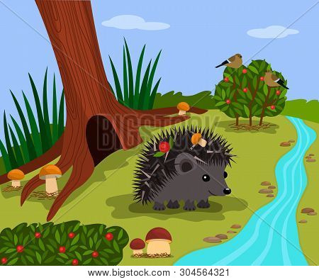 Forest Landscape Of A Sunny Day In A Forest Glade. Funny Hedgehog Near His Mink And Forest Stream. V