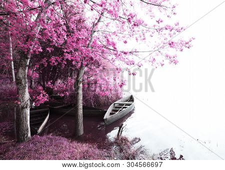 A Magical Vision With Infrared Light Effect