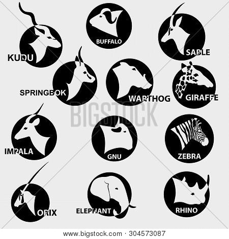Set Of Popular African Animals For Logos.  On Black Circles, On Light Backgroun Vector Illustration