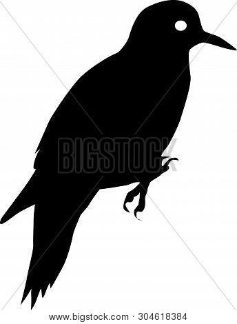 Woodpecker Bird Black Vector Silhouette Clip Art