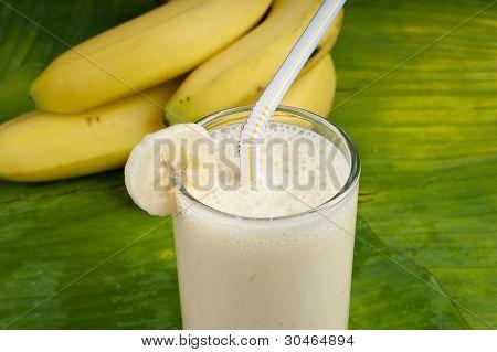 refreshing healthy yogurt banana smoothie milk shake