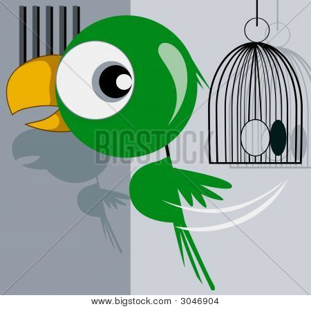 Illustration of parrot escaping from a cage with green colour poster