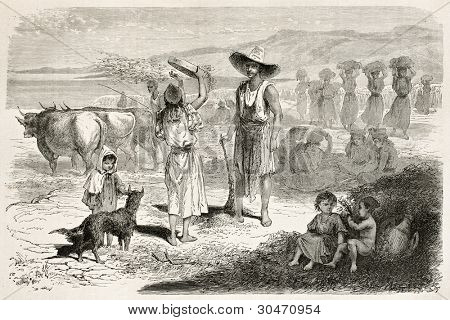 Woman threshing wheat in Kabylia, Algeria. Created by Stop after Duhousset, published on Le Tour Du Monde, Paris, 1867