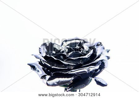 Forging And Sculpture. Beautiful Black Silver Flower. Floral Shop. Metallic Steel Color. Flower Cove