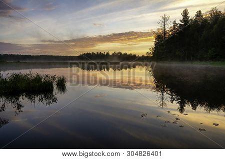 Swamp On Fish House Rd Gallway New York, Adirondacks