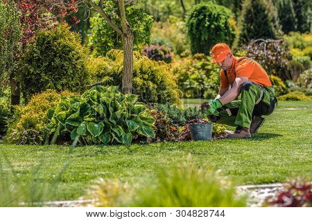 Professional Garden Worker. Caucasian Gardener And The Backyard Maintenance. Agriculture Industry Th