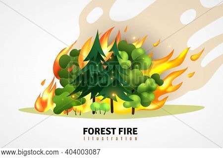 Natural Disasters Cartoon Design Concept Illustrated Green Coniferous And Deciduous Trees In Forest