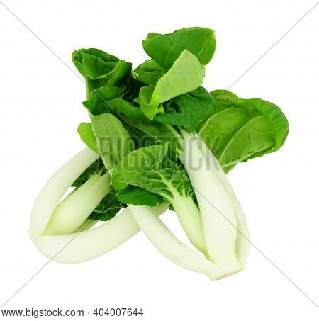 Freshly Trimmed Pak Choi Chinese Cabbage Isolated On A White Background