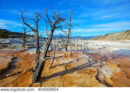 Mammoth Hot Springs in Yellowstone NP, USA