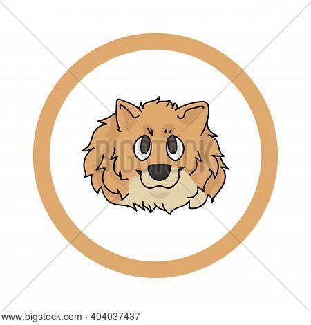 Cute Cartoon Pomeranian Face In Circle Dog Vector Clipart. Pedigree Kennel Doggie Breed For Kennel C