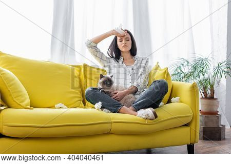 Young Allergic Woman Sitting On Sofa With Cat And Suffering From Headache