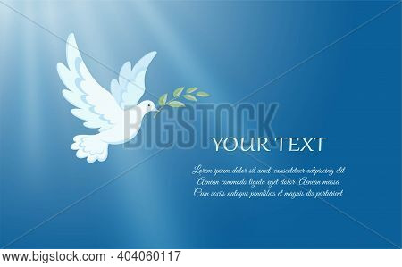 White Dove Flying Against The Blue Sky. Hands Are Raised Up And Dove Soaring In The Rays Of Light. D