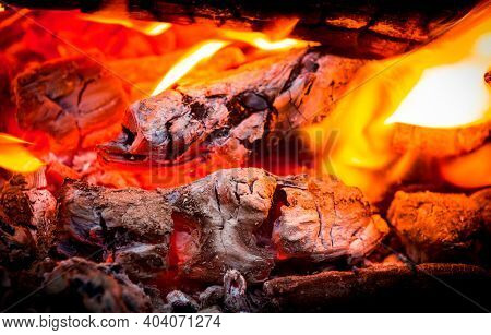 hot falmes on burning wood