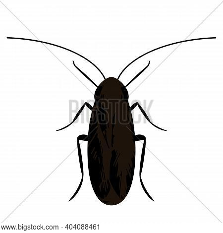 Silhouette Of A Black Cockroach. Icon In Flat Style Isolated On White Background