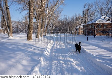 Small City Covered With Snow. Little Buildings And Houses On Winter With A Lot Of Snow Drifts On A S