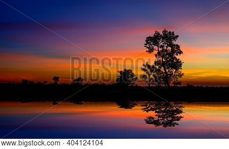 Panorama Silhouette Tree In Asia With Sunset.tree Silhouetted Against A Setting Sun Reflection On Wa