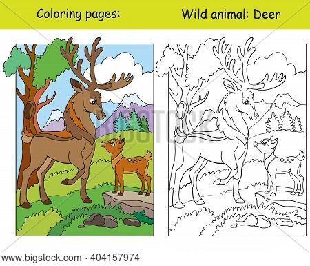 Vector Coloring Page With Cute Deers In Mountain Area. Cartoon Isolated Colorful Illustration. Color