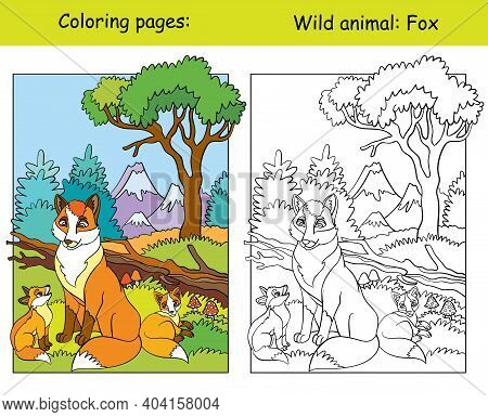 Vector Coloring Page With Cute Foxes In Mountain Area. Cartoon Isolated Colorful Illustration. Color
