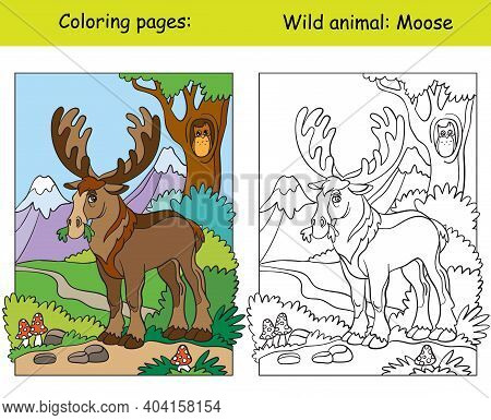 Vector Coloring Page With Cute Moose In Mountain Area. Cartoon Isolated Colorful Illustration. Color