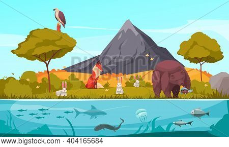 Biological Hierarchy Cartoon Colorful Background Demonstrated Ecosystem With Plants Animals And Fish