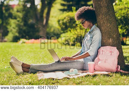 Full Length Body Size Side Profile Photo Of Black Skinned Woman With Curly Hair Working On Laptop Br