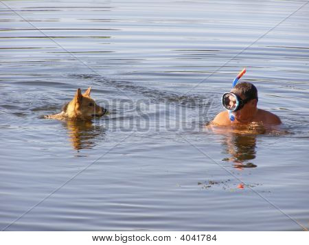 Dog And Man In The Water