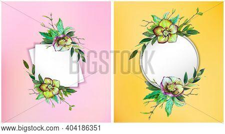 Floral Frames Set. Helleborus Flower. Wedding Invite