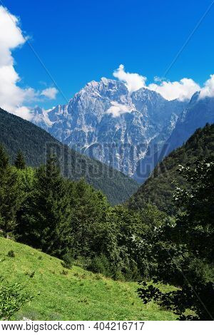 Beautiful Alpine Scene With Meadow, Forest And Mountain In Background. Mountaineering, Alpinism, Nat