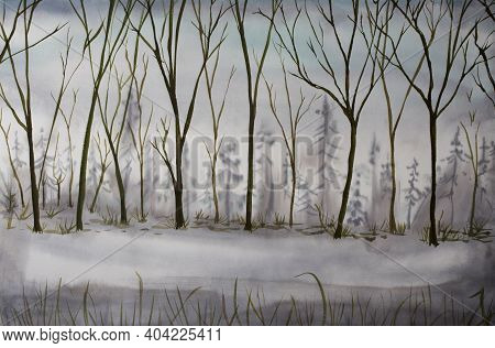 Winter Forest Illustration Outdoor Scenery Under The Snow