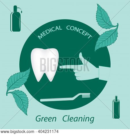 Tooth, Eco Friendly Care Products, Doctor's Hand - Vector. Happy Dentist Day. International Day Of T